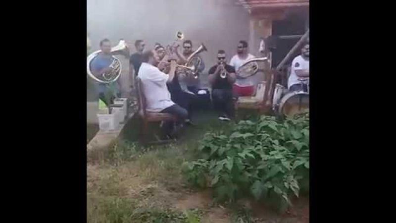 AGUSEVİ CAMBO Orchestra KİNG 👑👑🎼NEW LİVE Broadcast Temmuz 2016 🔫 👽 🎭 ysNgktŞ🇹🇷