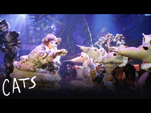 The Old Gumbie Cat   Cats the Musical