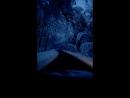 В темно-синем лесу....