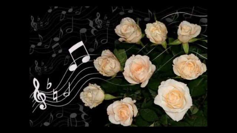 Открытки с живыми цветами музыкальные