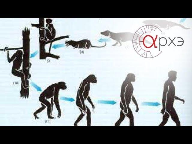 Станислав Дробышевский: Теория эволюции