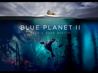 Blue Planet II - The Prequel (English YouTube subtitles)
