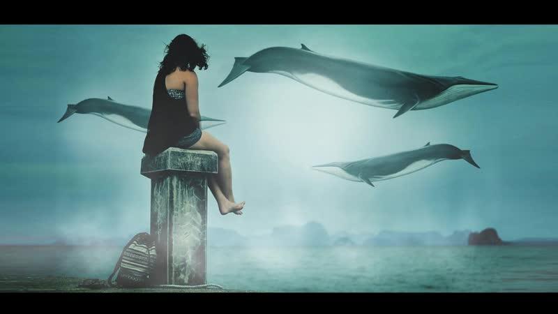 Чудо юдо чудо рыба кит!