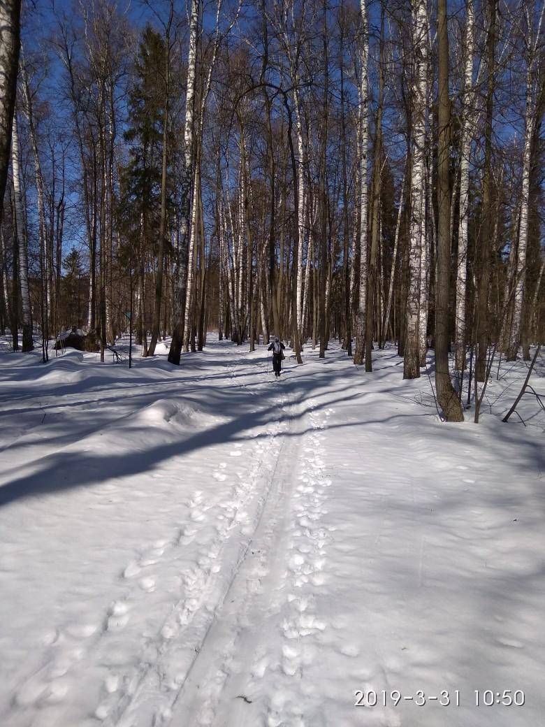 Сегодня спортивная база Маяк закрыла лыжный сезон.