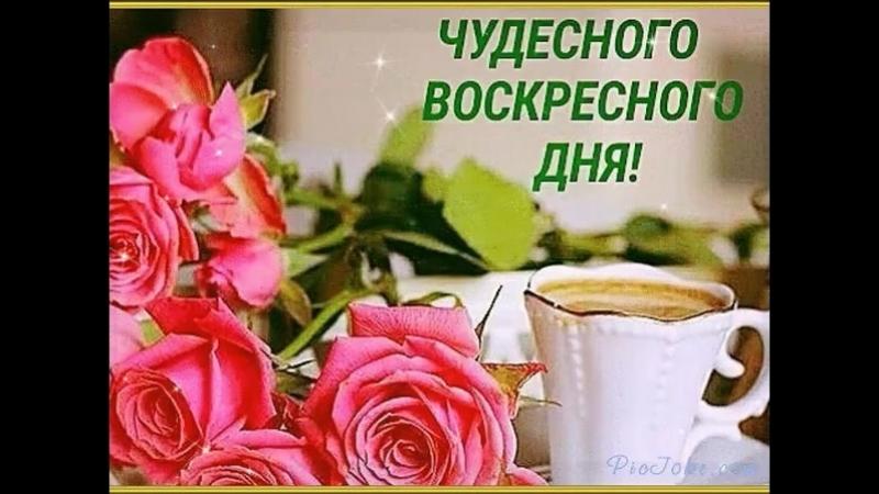 Doc543897305_520065179.mp4