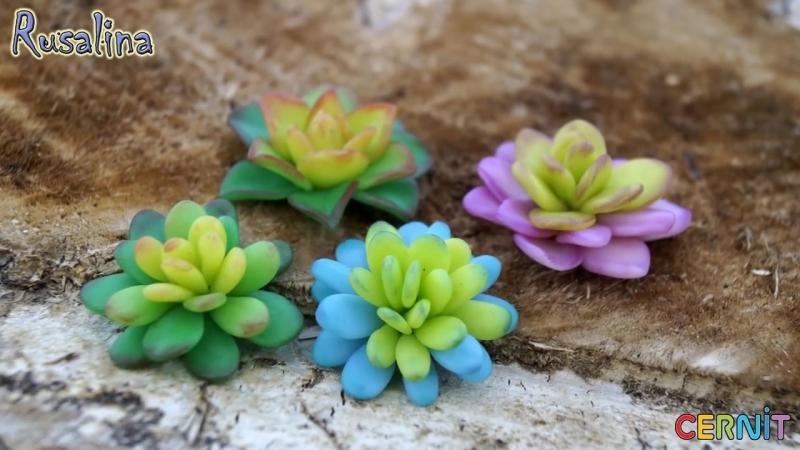 DIY ❤ Суккуленты без инструментов из полимерной глины своими руками