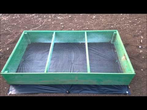 Forraje Verde Hidropónico Maíz Amarillo primera parte