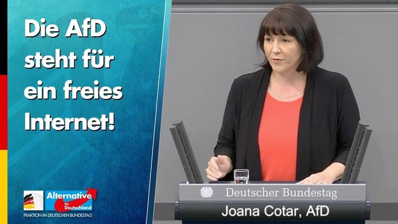 Die AfD steht für ein freies Internet Joana Cotar AfD Fraktion im Bundestag