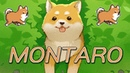 Montaro - Life of Doge Pantsu, Manly Lets Play