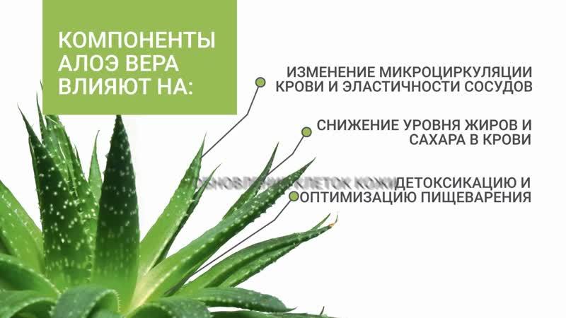 Мини фильм о питьевом геле Алоэ Вера Персик