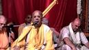 H.H. Gopal Krishna Goswami. Vrindavan. Srila Prabhupada disappearance day (30.10.2011)