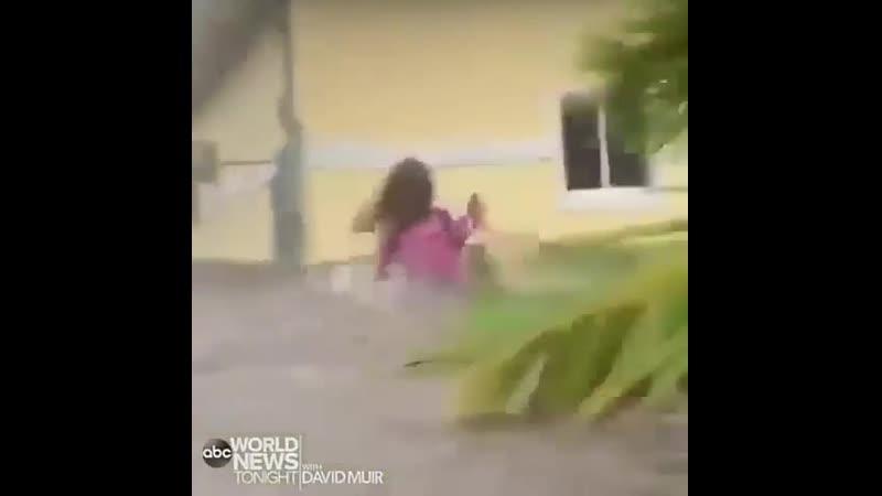 Спасение собак во время урагана Дориан, 2 сентября 2019