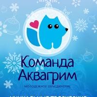 Логотип Арт мастер-классы от Команды Аквагрим Красноярск