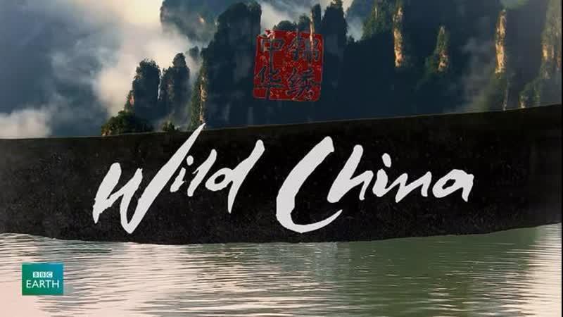 BBC: Дикий Китай 6 серия -Время возможностей