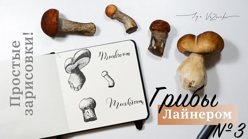 Так просто я даже и не думала что грибы можно так нарисовать