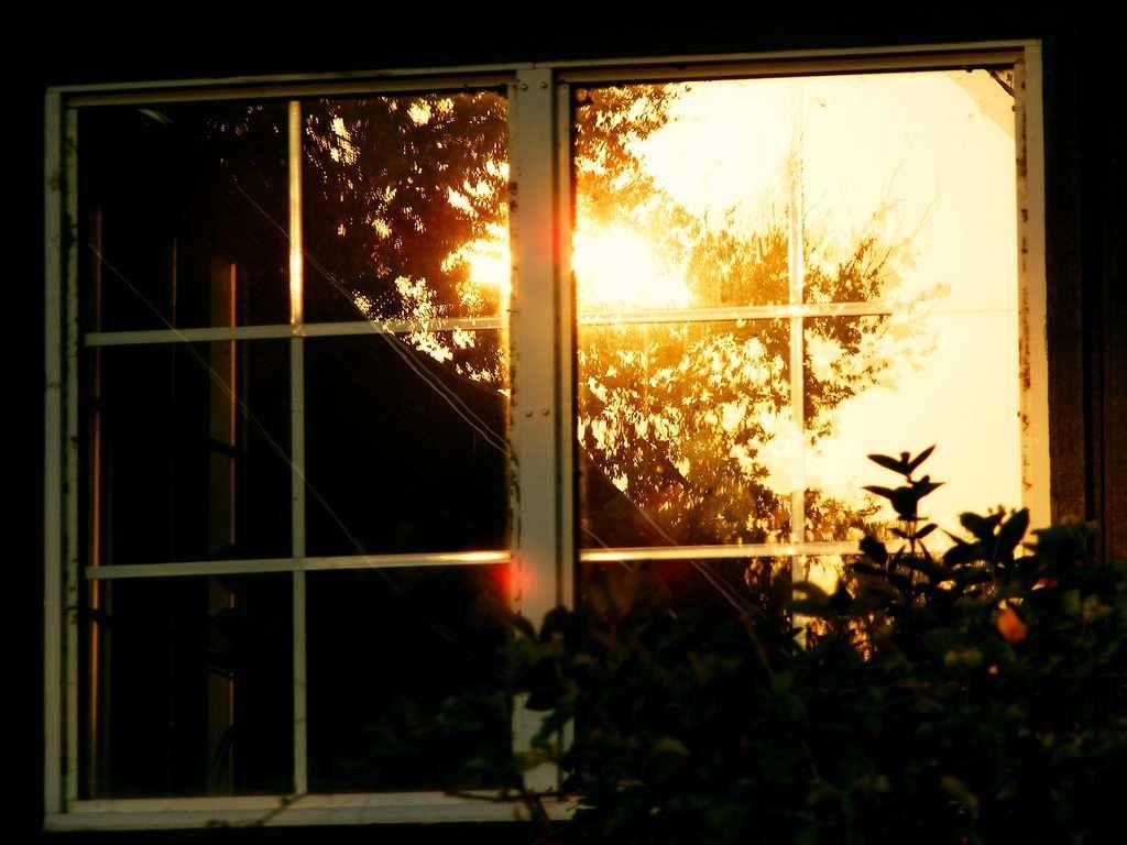 калужскую гифка свет в окнах кого нибудь поздравляли
