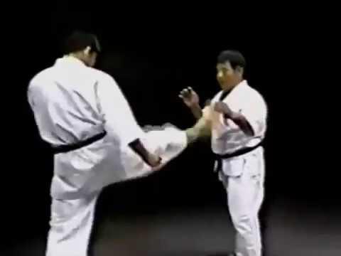Morio Higaonna Goju Ryu Iri Kumi