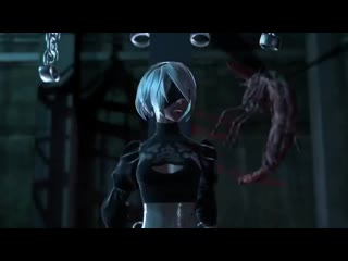 2b with insect - drezal