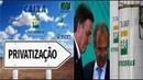 PRIVATIZAÇÃO DA PETROBRAS ►A reação eufórica das ações após o rumor de privatização em uma imagem
