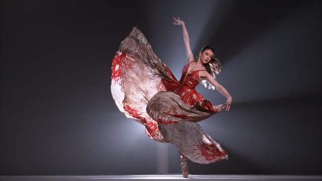 Missed nuance a ballet art film trailer 2