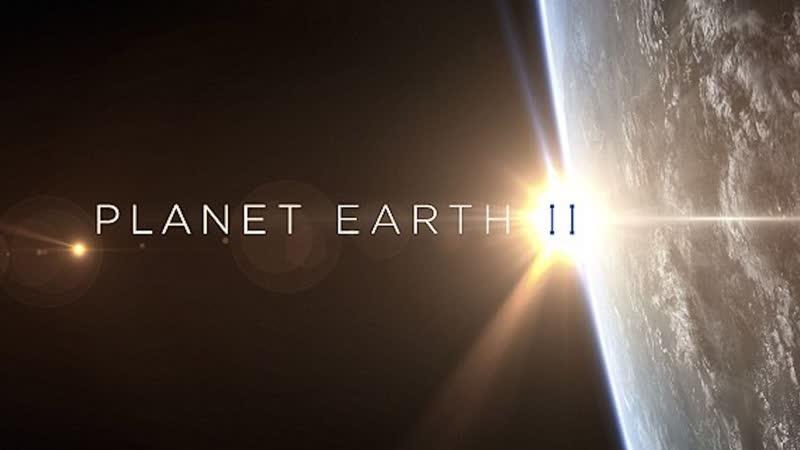 BBC Планета Земля 2 2016 г Научно познавательный Джунгли