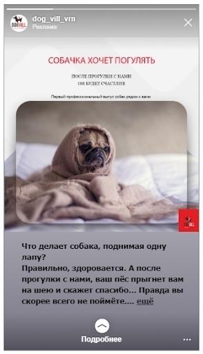 Кейс: продвижение стартапа по выгулу собак, изображение №13