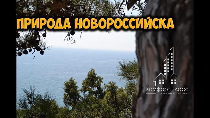 НОВОРОССИЙСК ПРИРОДА Мысхако весна 07 04 2019 г Красивые виды с горы Колдун