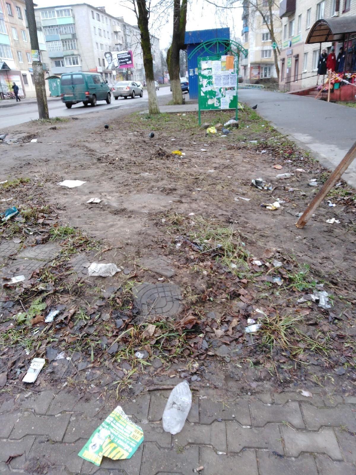 Город погряз в грязи и пока нет снега, можно навести чистоту.