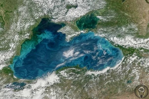 О древних городах Черноморского побережья. В летописях времен античности есть немало информации о городах на побережье Черного моря, причем часть городов описывается с очень точными