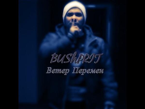 Bush Prit - Ветер перемен (prod. by Vadim Palaguta) (2 round 17ib)