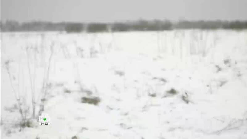 Ленинград 46 захват