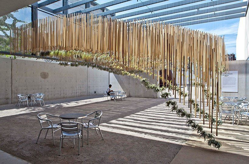 nomad studio suspends an aerial garden at the contemporary art museum of saint louis