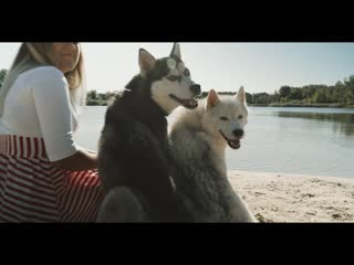 Clip kennel ☆rey_norte☆-