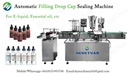 Automatic 30ml Bottle Turntable Feeding, Filling Dropper Cap Sealing Machine Bottling Line