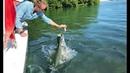 Coole Videos 394 🐠🐟 Fütterung Der Fische / Feeding the Fish 🤦♂️ ✪ Stern DuTube