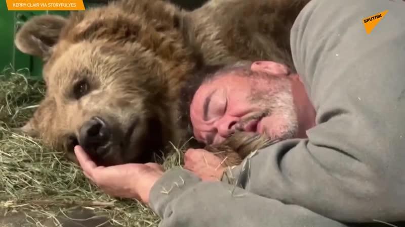 Video které dobylo internet Laskavý medvěd má rad svého pečovatele Olízl mu ruku
