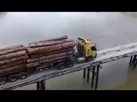 Viral Cekap betul pemandu lori balak ni lalu jambatan kayu Hutan Pahang