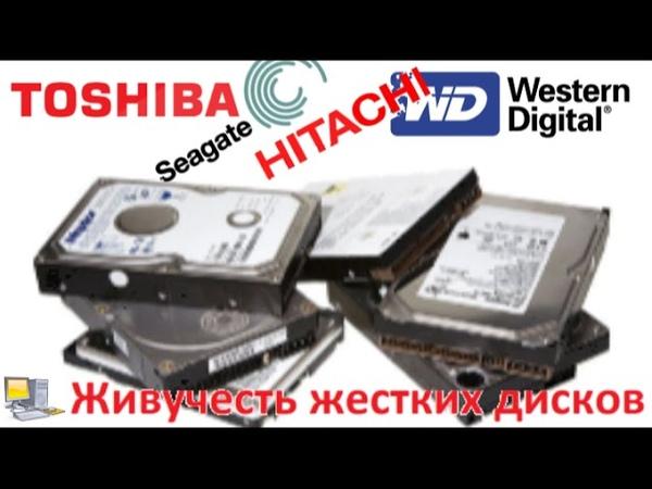Живучесть жестких дисков