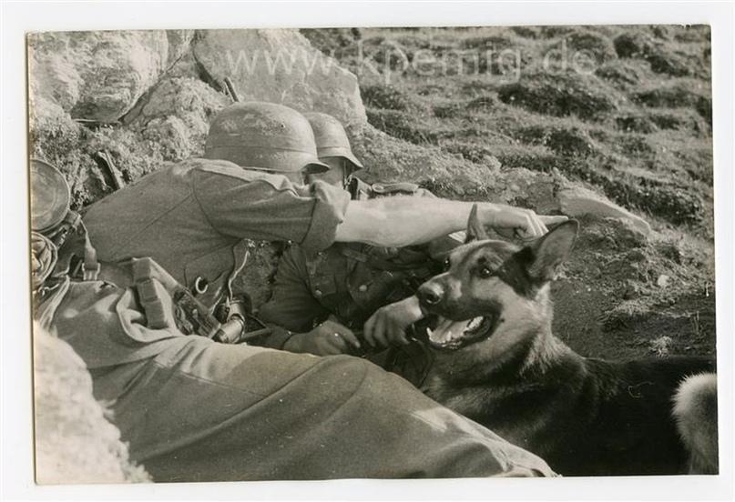 Рядовой вермахта Тассо, изображение №8