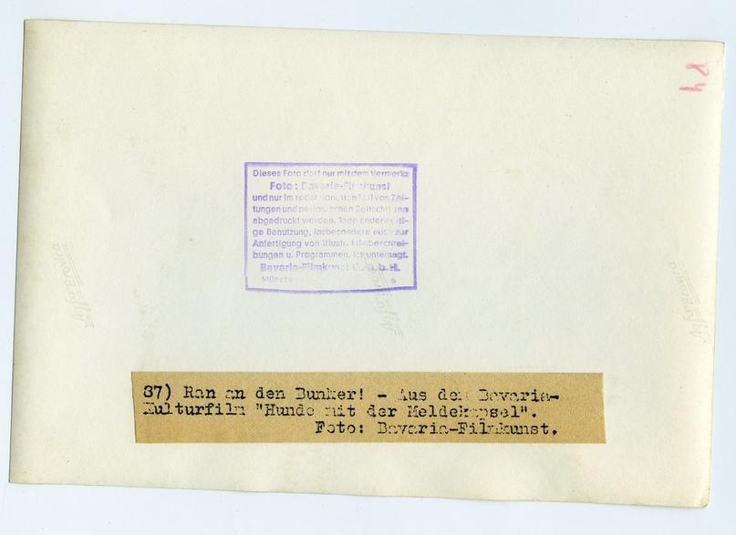 Рядовой вермахта Тассо, изображение №23