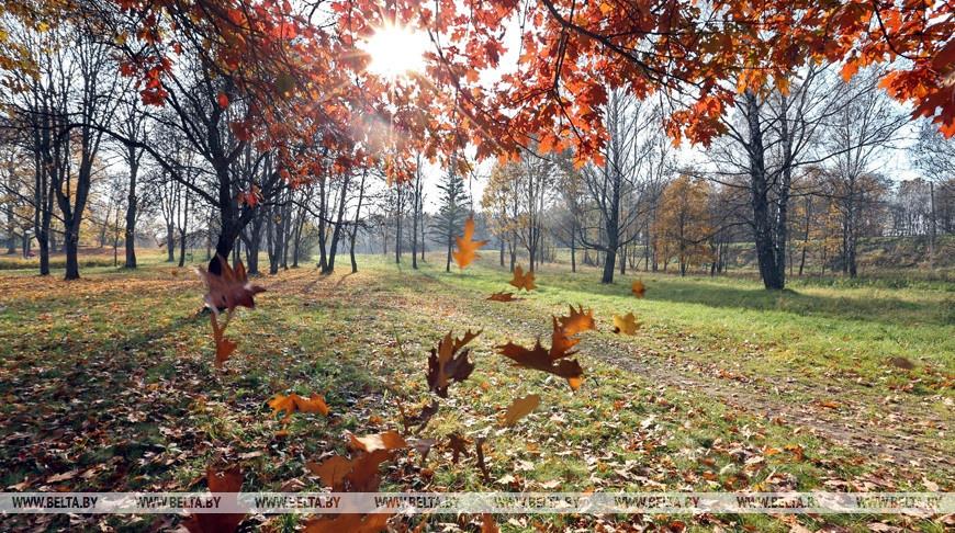 Температурные рекорды побиты 13 октября в нескольких городах Брестской области