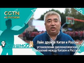Лайк дружбе Китая и России: Чжао Вэй