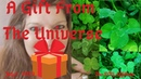 Are Four Leaf Clovers Lucky Gift from Universe