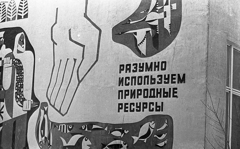 Пушно-меховой техникум Иркутска, изображение №9