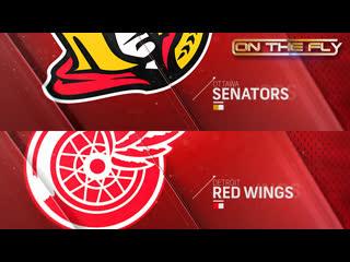 Senators - Red Wings 11/19/19