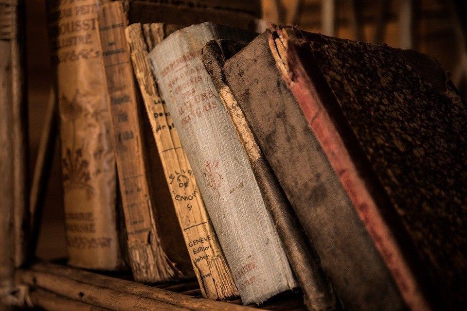 Акция «Библиодруг — помощник библиотекаря» состоится в библиотеке на Рождественской