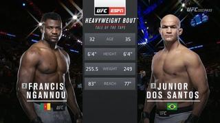 Фрэнсис Нганну vs Джуниор Дос Сантос: Вспоминаем бой