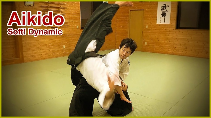 Aikido Soft Dynami and Fluid movement Shirakawa Ryuji shihan