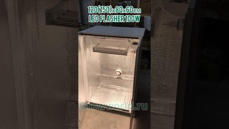 Гроубокс В120 150 хШ80хГ60см LED FLASHER 100W SUPERSILENT PPF 2 9ммоль