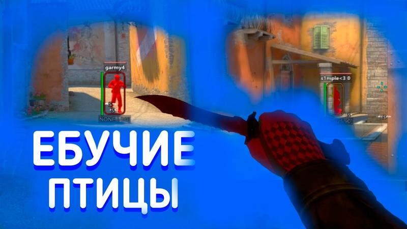 ДО ГЛОБАЛА С СОФТОМ 8 || MM || ЕБУЧИЕ ПТИЦЫ [YeahNot]
